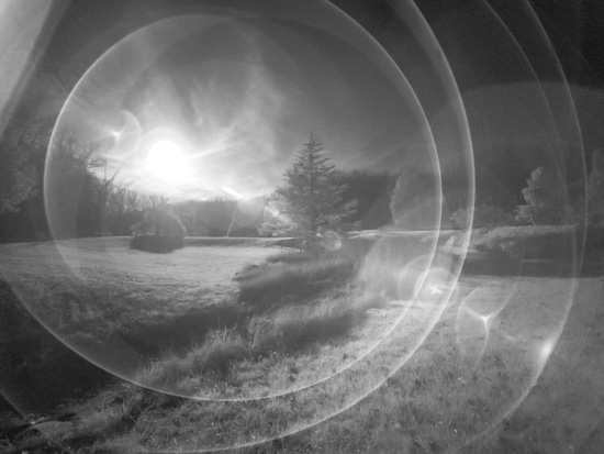 Тестовые фото Venus Optics LAOWA 7.5 mm f/2 MFT
