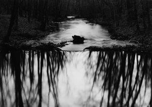 Пол Капонигро. Цитаты лучших профессиональных фотографов.
